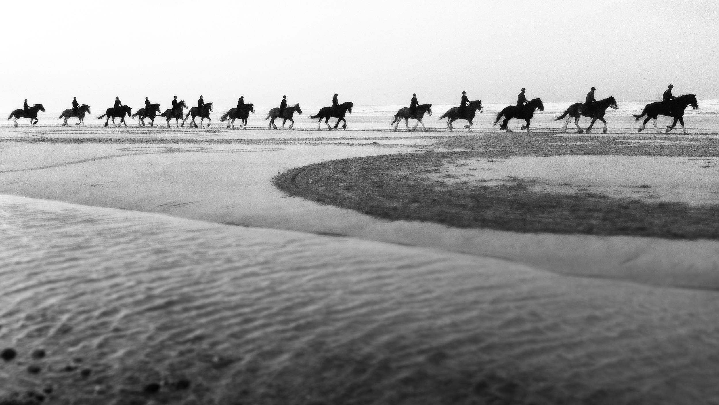 HorsesWalkingDrawings.jpg