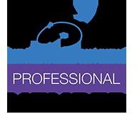 NSA_member_logos_professional-PNG.png