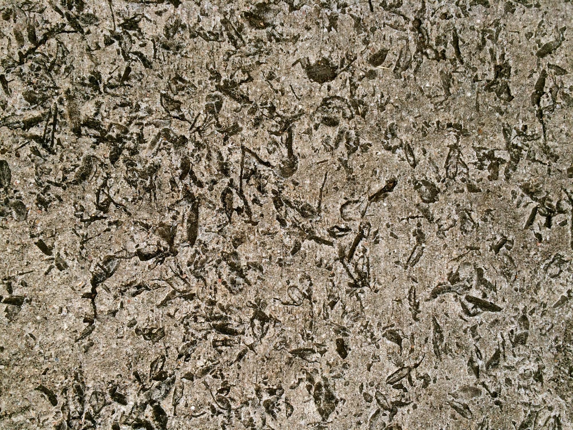 Look Down Concrete Texture