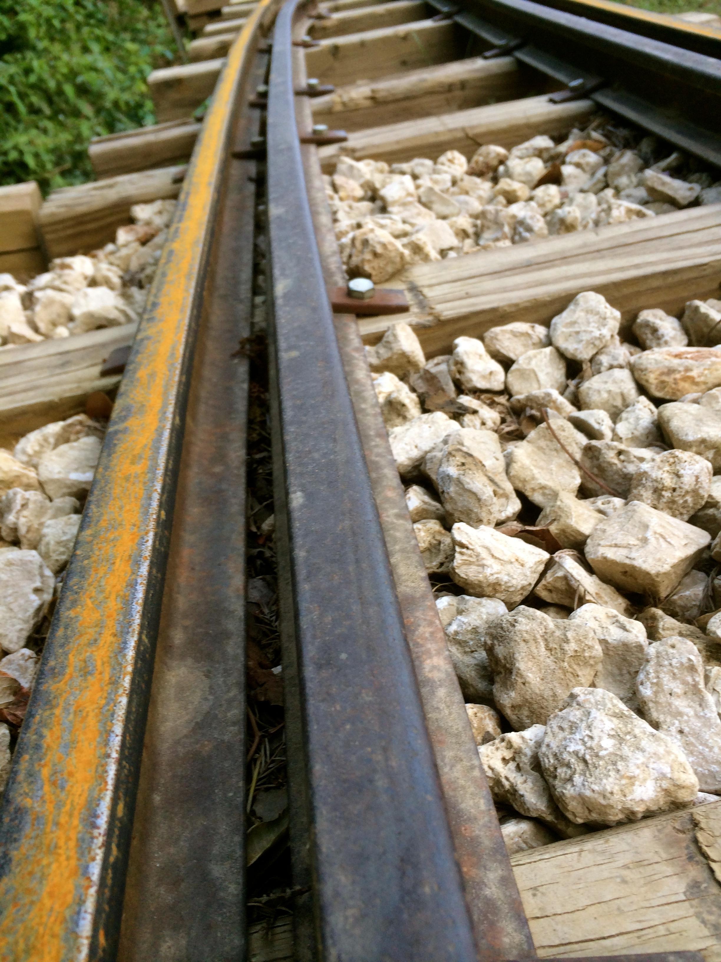 Zilker Park Train Tracks