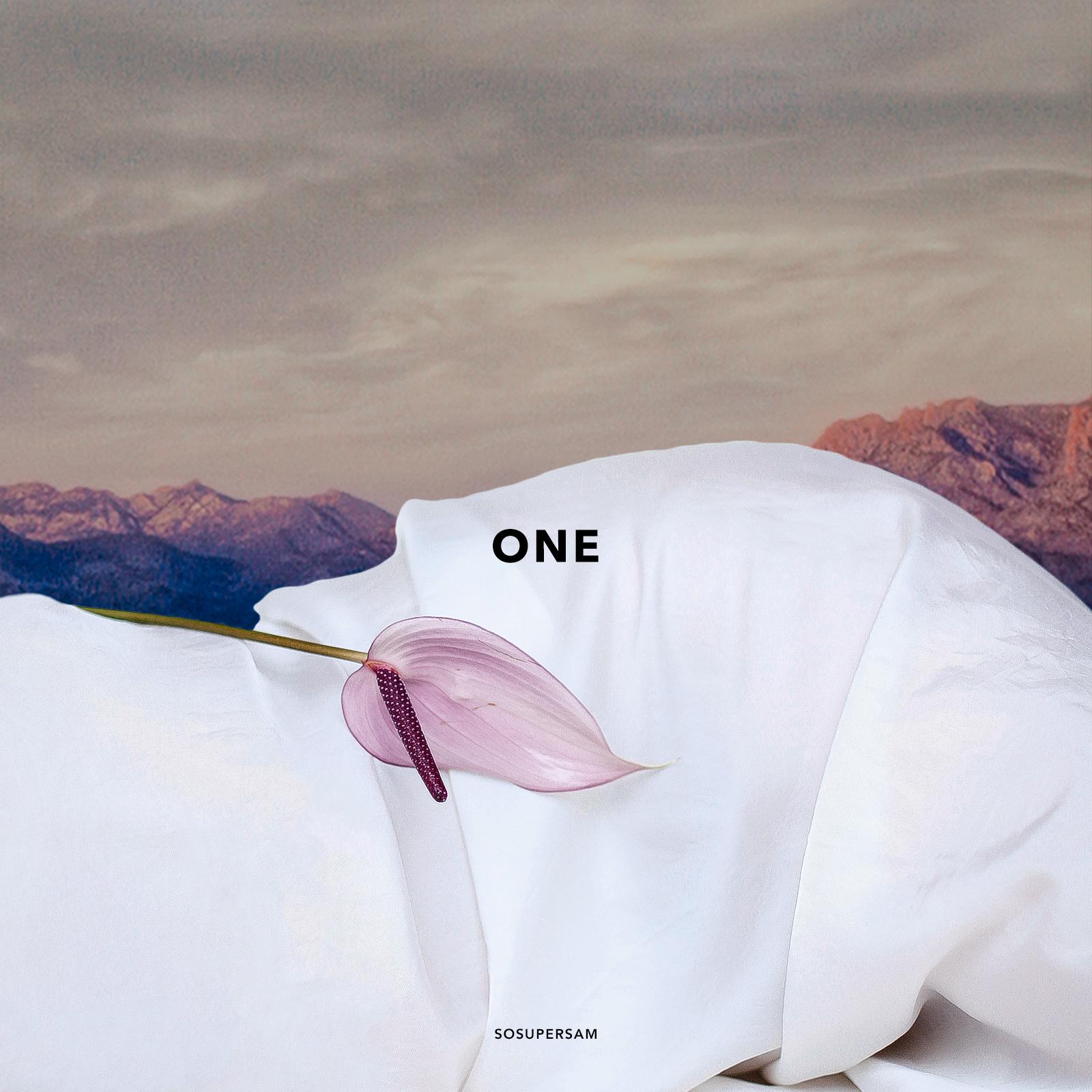 1_ONE_.jpg