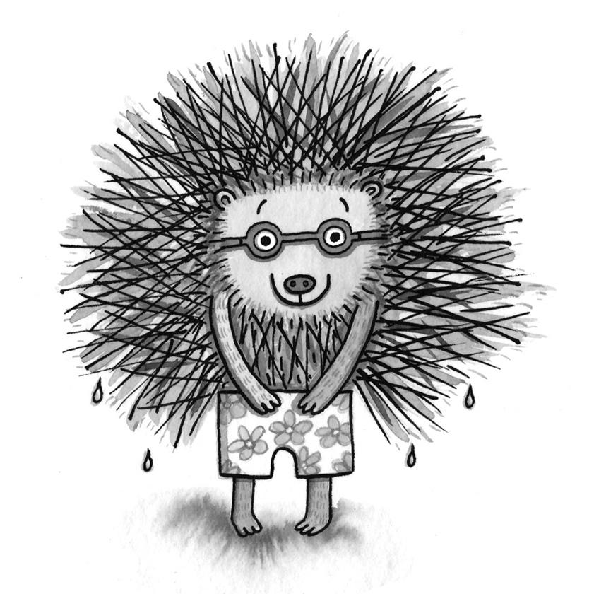 Hedgehog's Swimming Report.jpeg