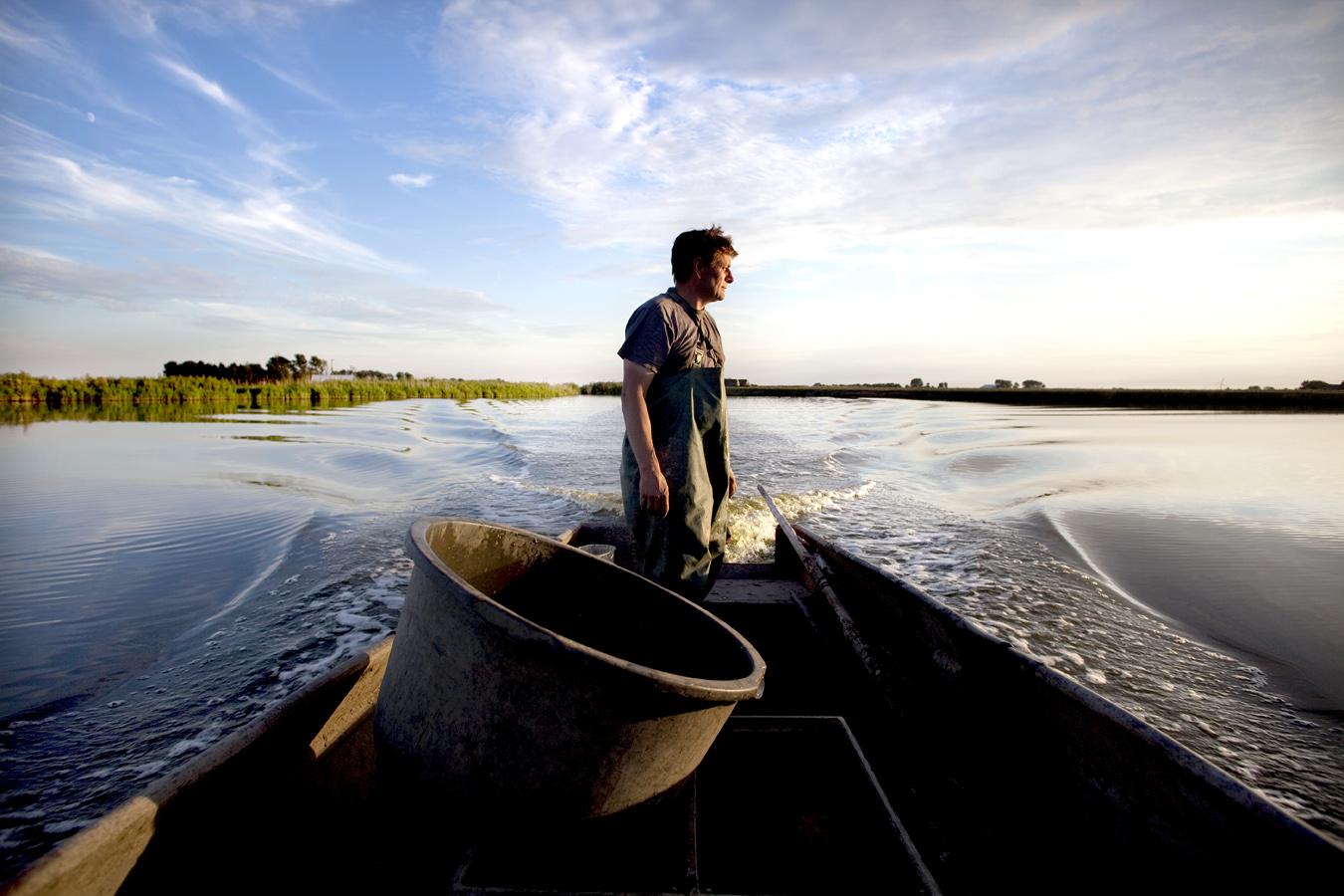 Fisherman Jaap matches eels.  Use: Magazine Peil for HHNK   Cliënts: Hoogheemraadschap (HHNK)