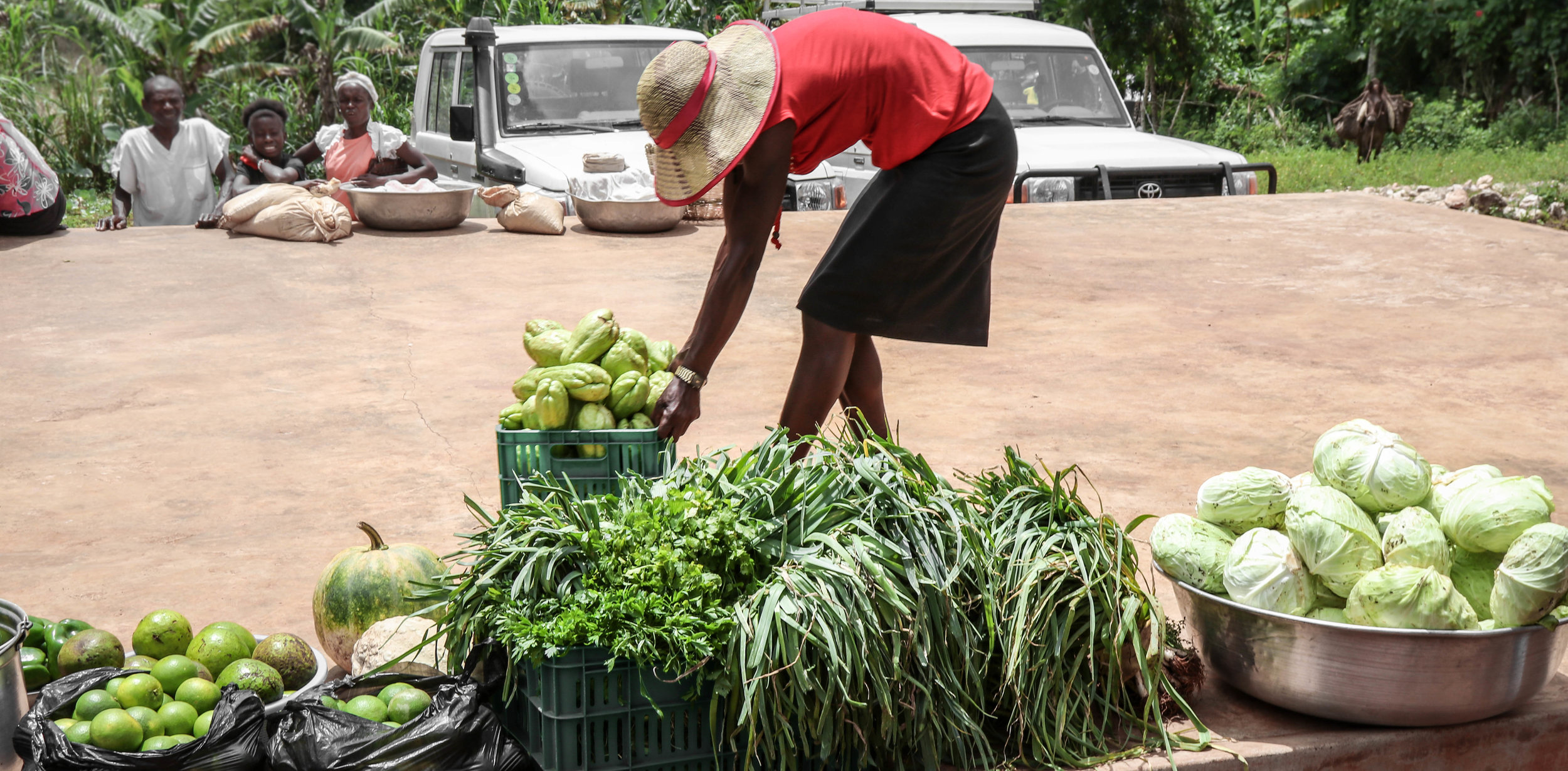 Freshly harvested produce being brought out to celebrate a bounteous harvest and the ending of a successful MCC project to rebuild gardens destroyed last year by Hurricane Matthew.Goyave, Haiti.