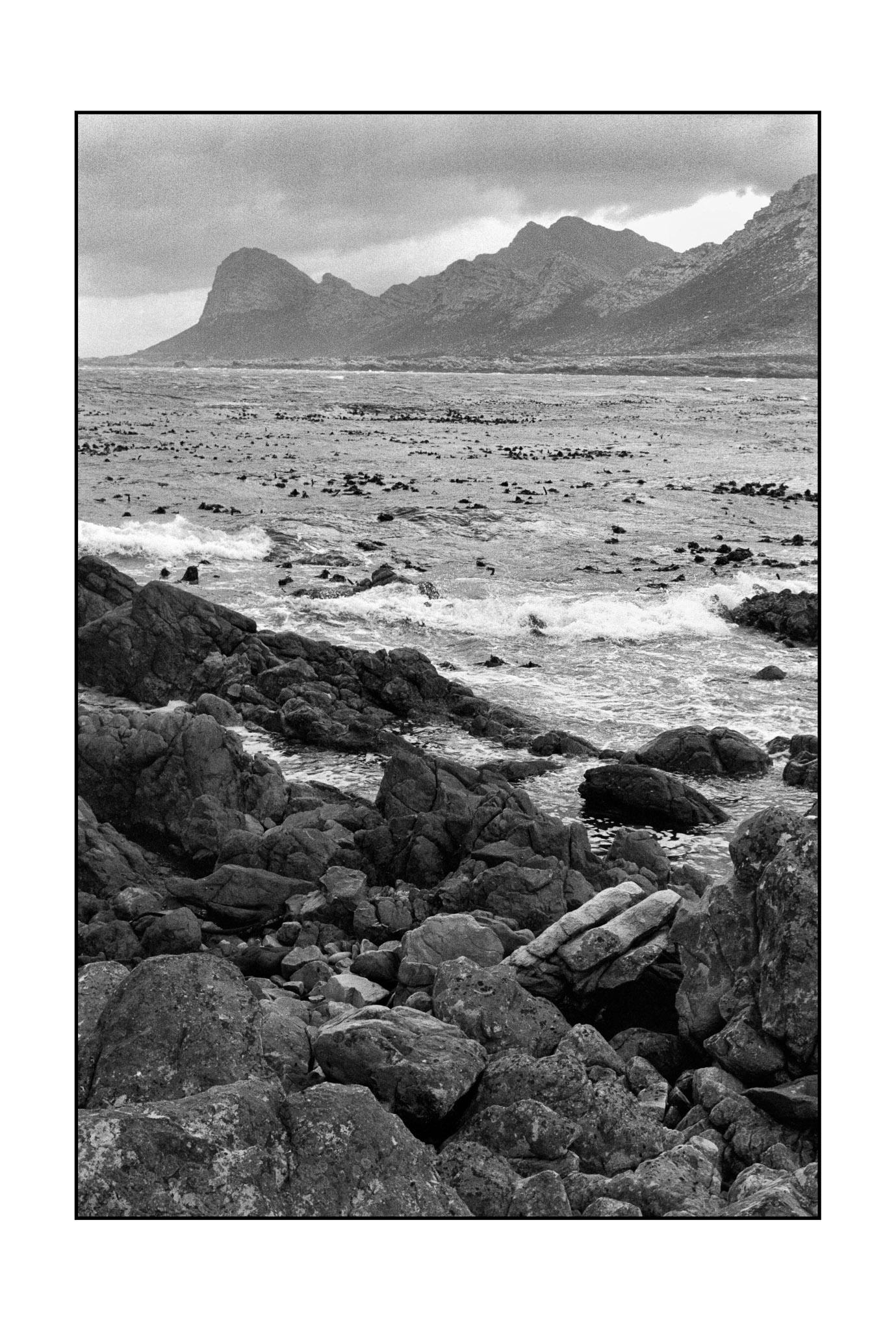 Pringle Bay, Western Cape, South Africa (2010)