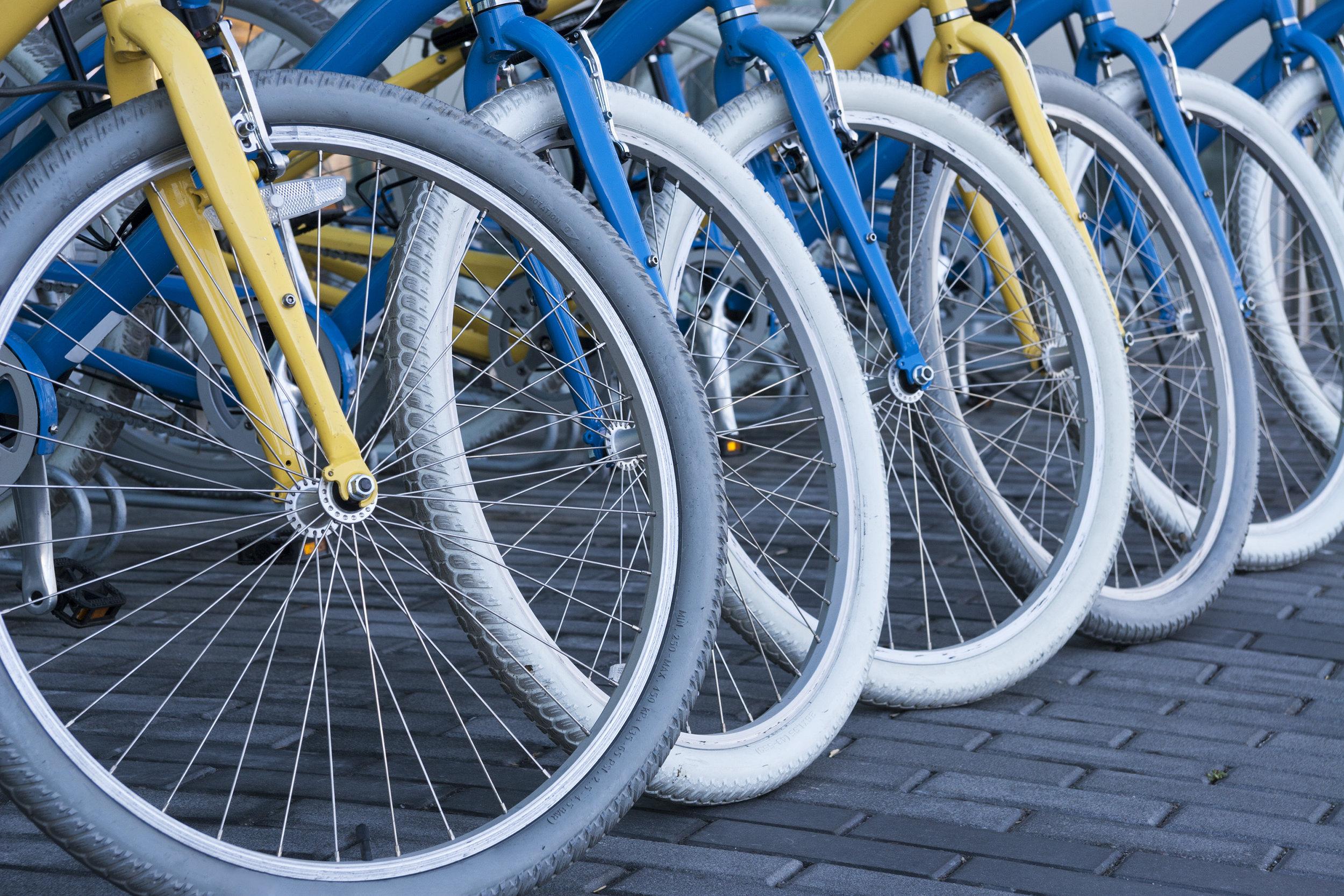 bicycle-rental.jpg