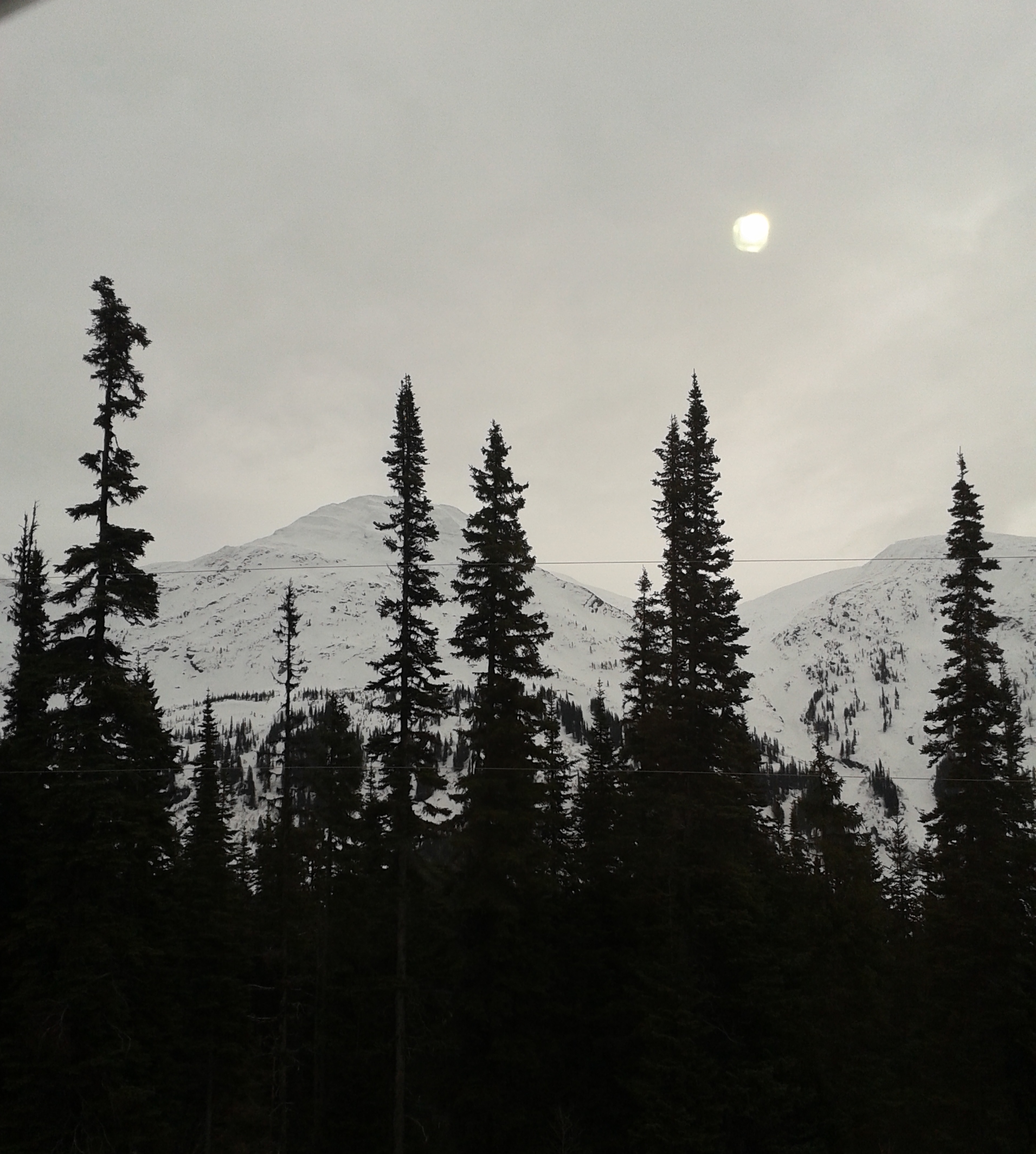 DAY 22 – NATURE BEAUTIFUL       Travelling up the northern highway in the early morning – Highway 97 Way Up North, North to Alaska (but not Alaska LOL - BC)