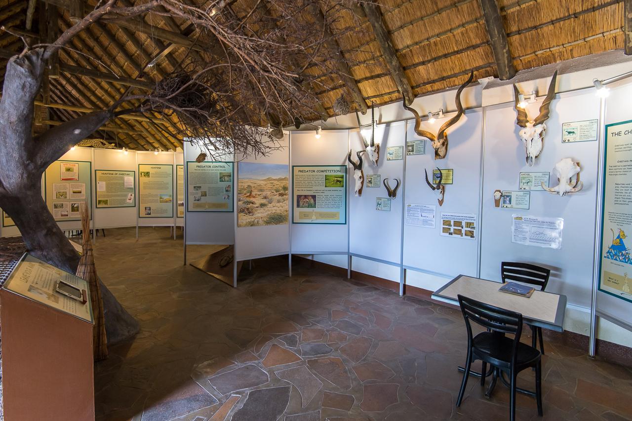 Cheetah Museum