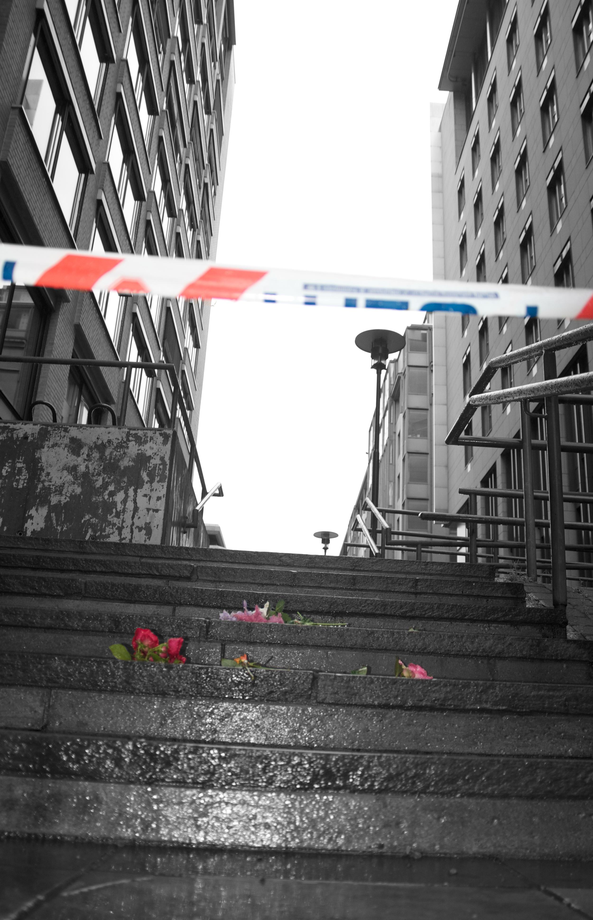 Blomst og avsperring sh.jpg