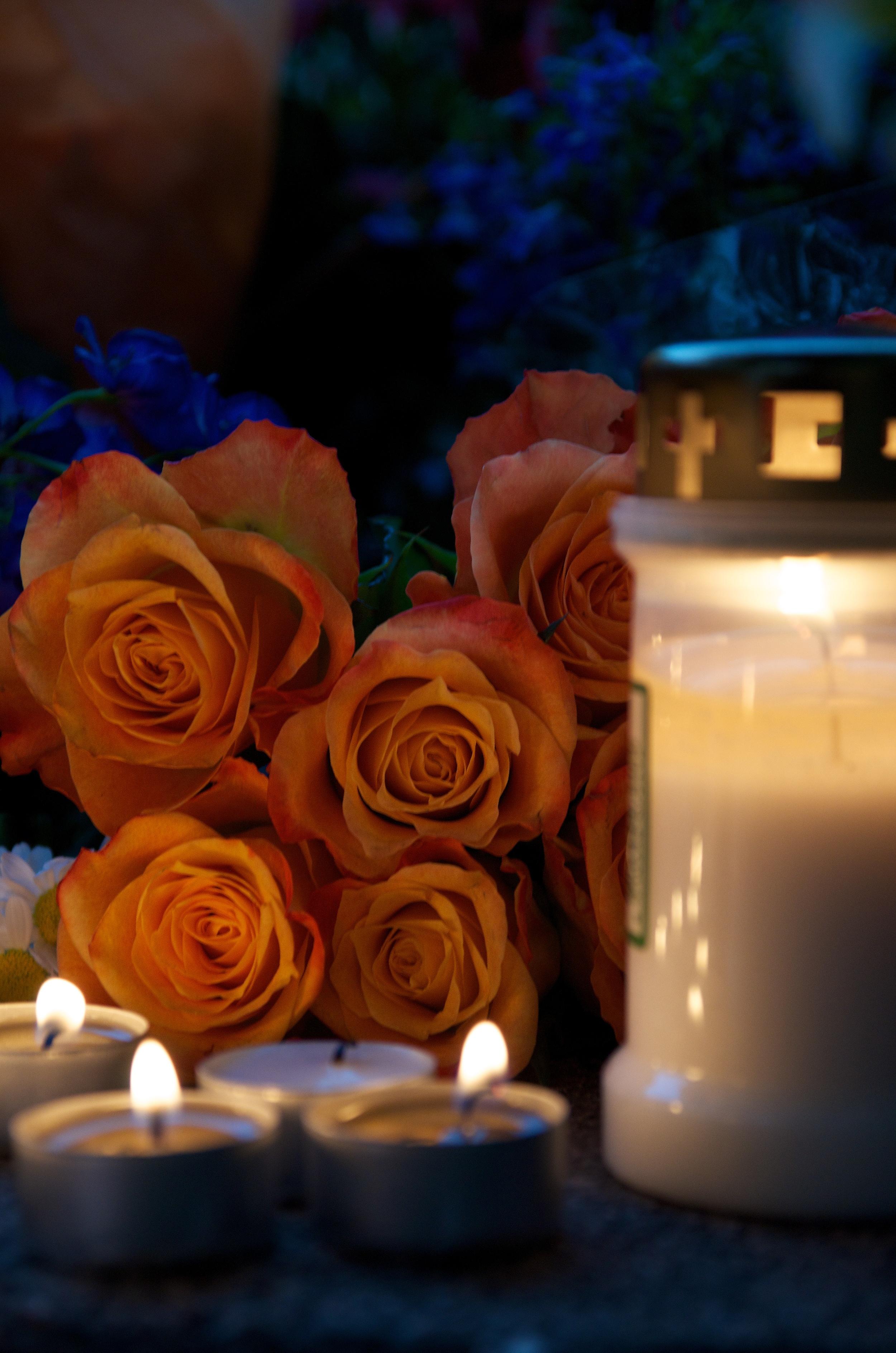 Gule roser.jpg