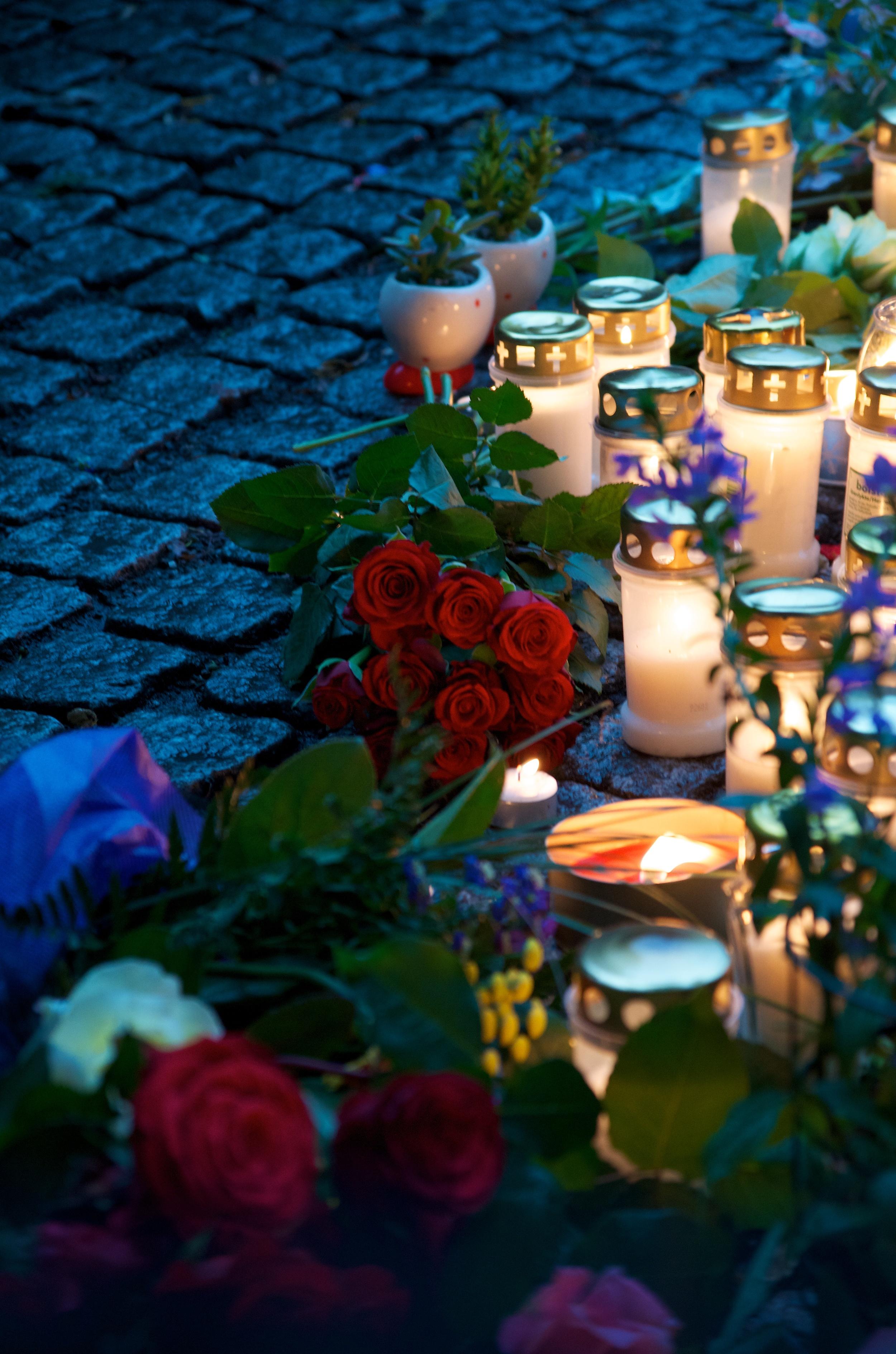 Roser og lys.jpg