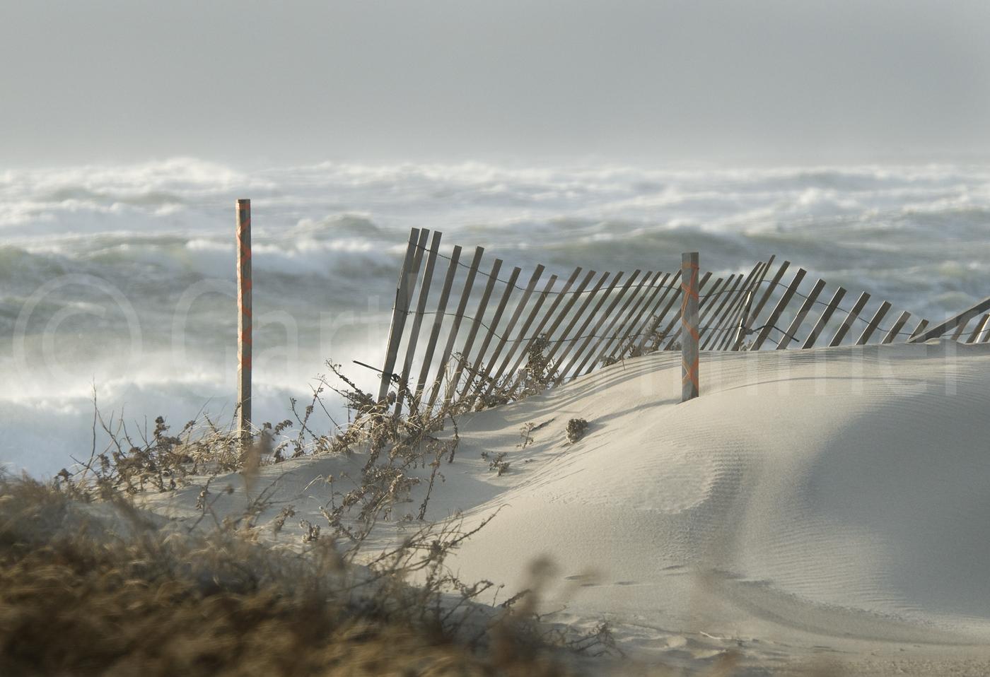 Fence, Nantucket