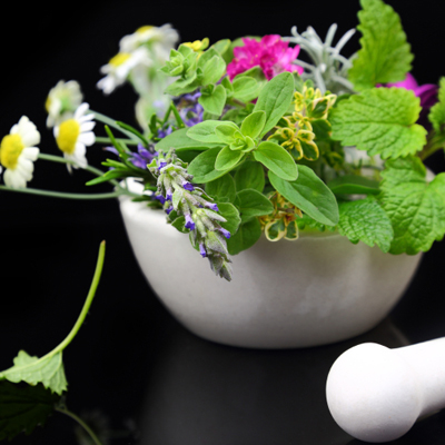 White porcelain mortar and pestle with fresh herbs on black back