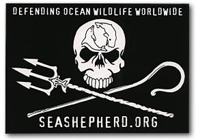 sea shepherd conservation