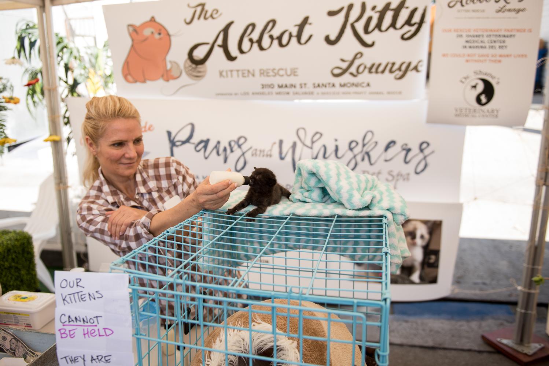 Abbot-Kinney-Festival-2018-Home-34.jpg