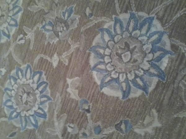 Safavieh 8' x 10' Wool Rug     $283     View on Craigslist