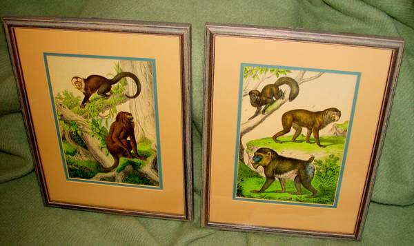 Pair of Antique Monkey Prints     $85     View on Craigslist