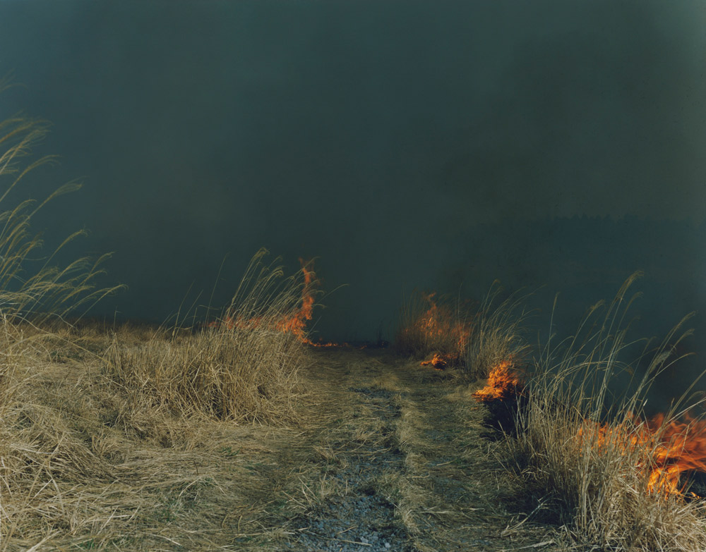 Untitled  (AT1), from the series  Ametsuchi , 2012