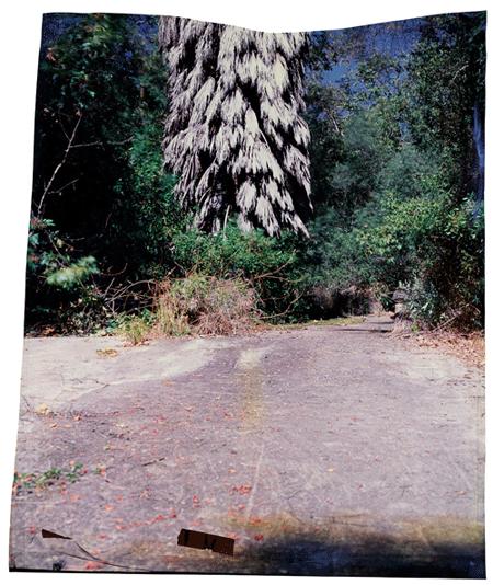 Verenda de la Montura at Camino , 2012
