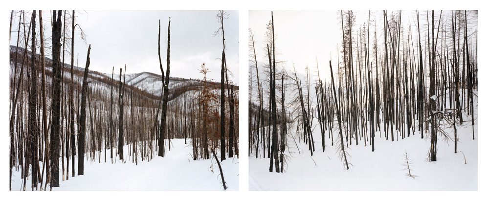 Late Winter (Foothills of the White Clouds), Idaho , 2008