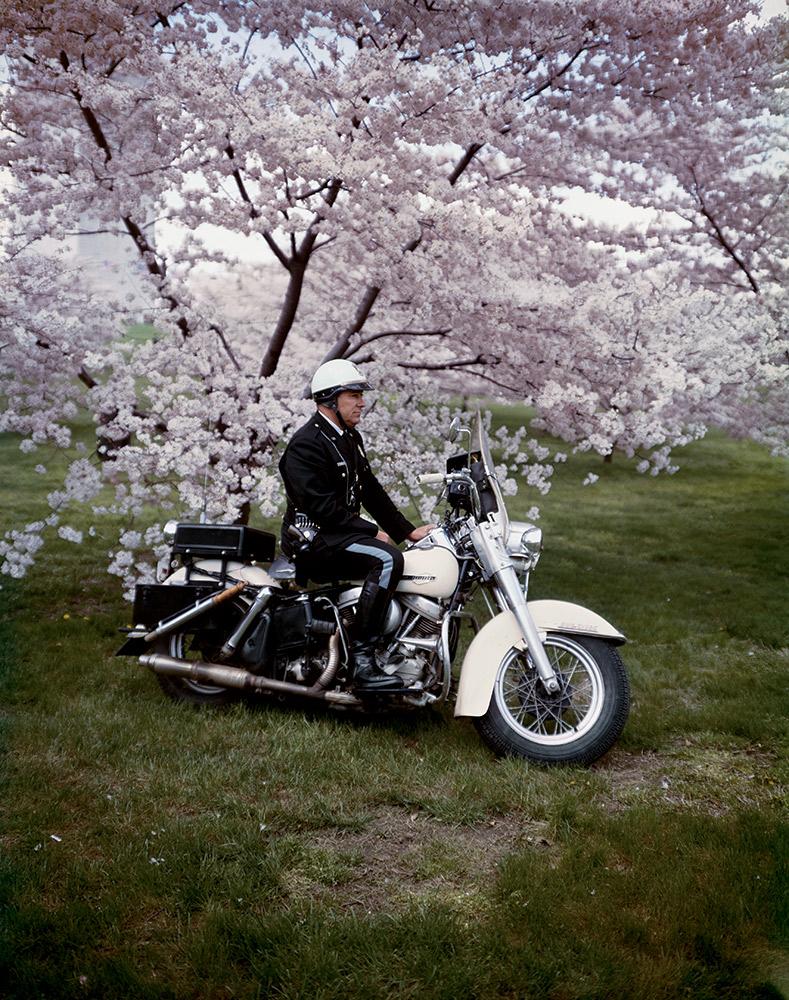 Springtime , Washington, 1965 Dye Transfer Print 20 x 16 inch
