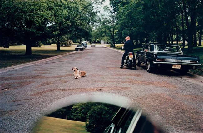 Untitled (Mirror dog road), 1970-1973 Dye Transfer Print 16 x 20 inches