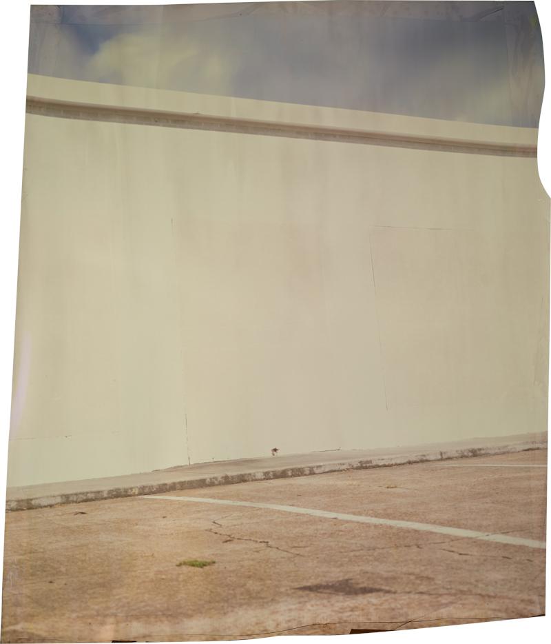 Levee at Horse Shoe Landing , 2013 Image on Ilfochrome paper, unique photograph 34 x 28 inches