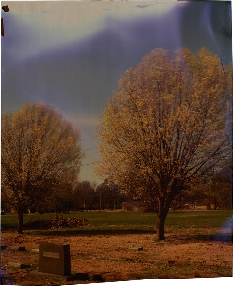 Oak Ridge at Steen , 2014 Image on Ilfochrome paper, unique photograph 34 x 28 inches