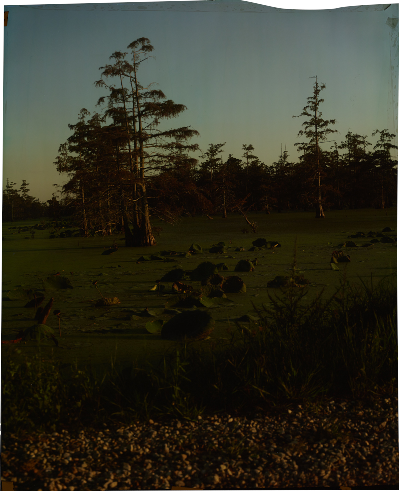 County Line at Annis Break, V_4 , 2013 Image on Ilfochrome paper, unique photograph 34 x 28 inches