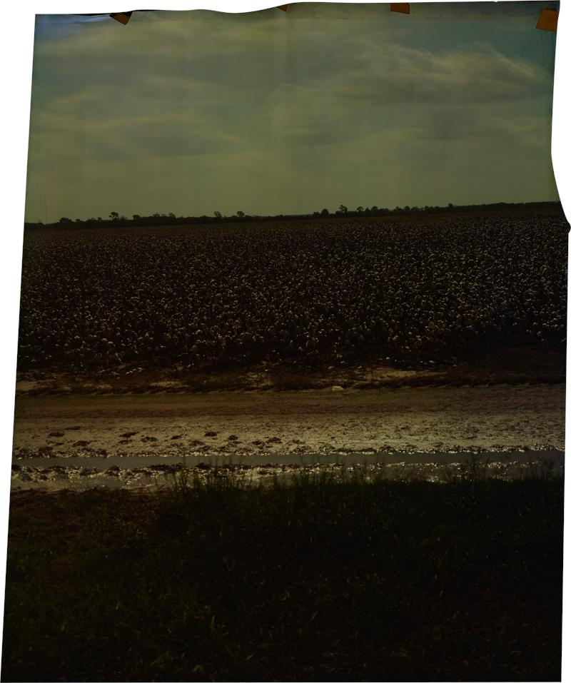 Lee at Oakhurst , 2013 Image on Ilfochrome paper, unique photograph 34 x 28 inches