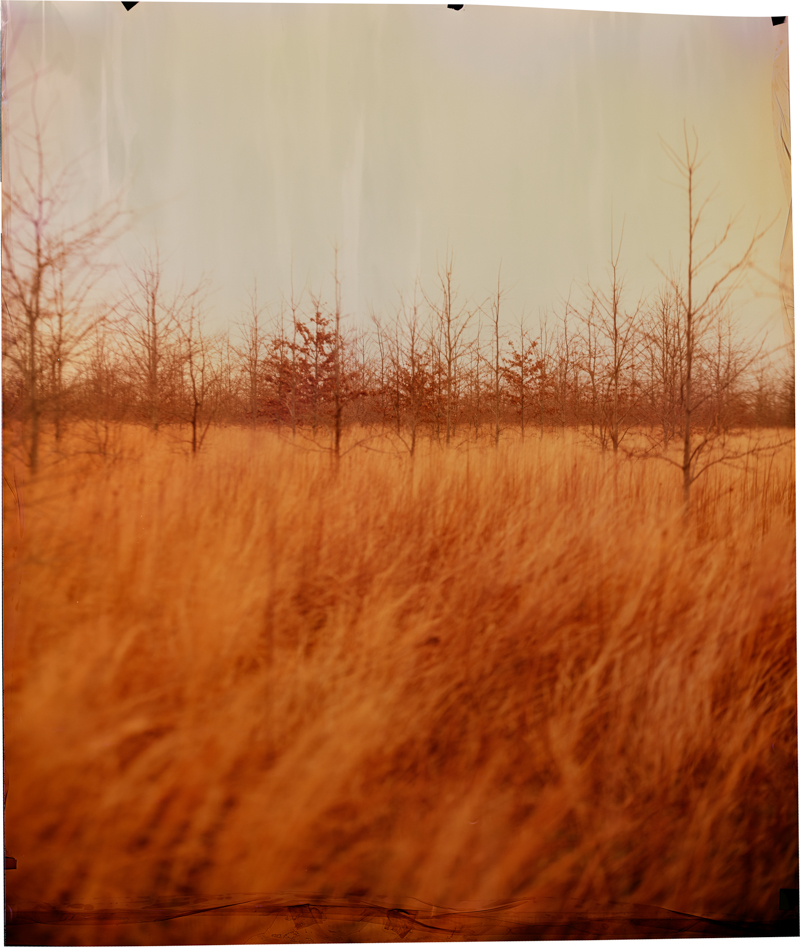 County Line at North New Africa , 2014 Image on Ilfochrome paper, unique photograph 33.5 x 27.75 inches