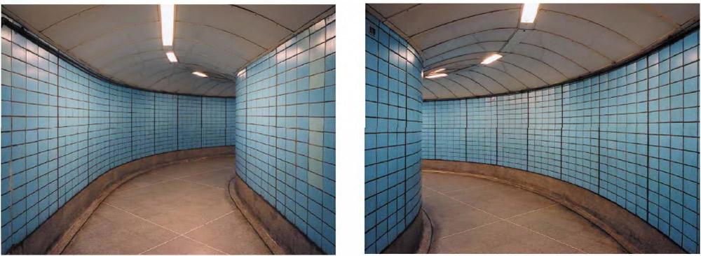 Diergarten-londonembankment-1.jpg
