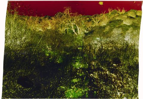 John Chiara, Starr King: 30th: Coral, 2013, Dye destruction photograph on Ilfochrome paper (33 x 28 in.)