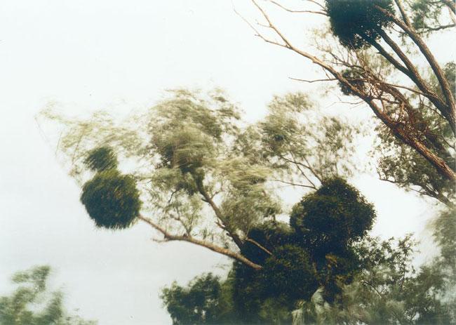 Elger Esser ,  Sully II, Frankreich , 2001