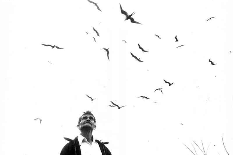 Señor de los pájaros, Nayarit , 1985 Silver Gelatin Print 16 x 20 inches