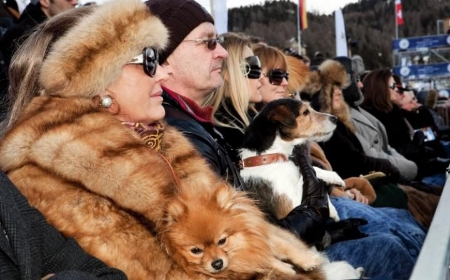 Martin Parr, St Moritz polo world cup on snow  from  Luxury , 2011.CREDIT:MARTIN PARR