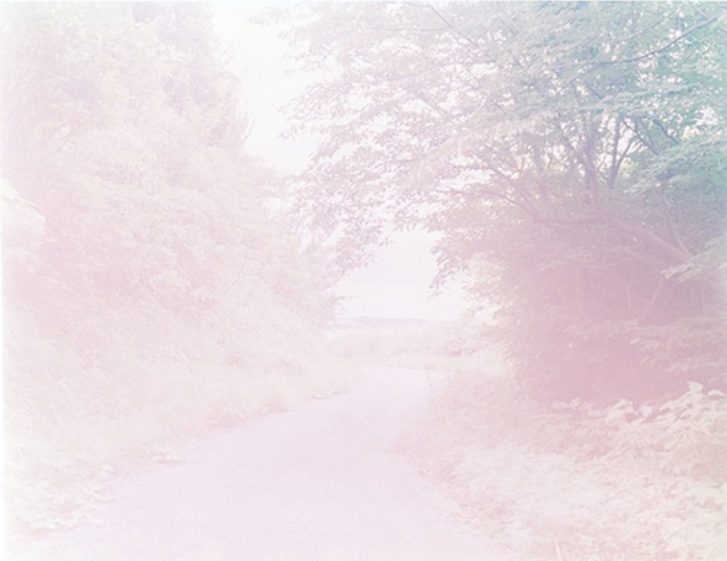 "Untitled ""The River Embraced Me"" series from 2015 © Rinko Kawauchi"