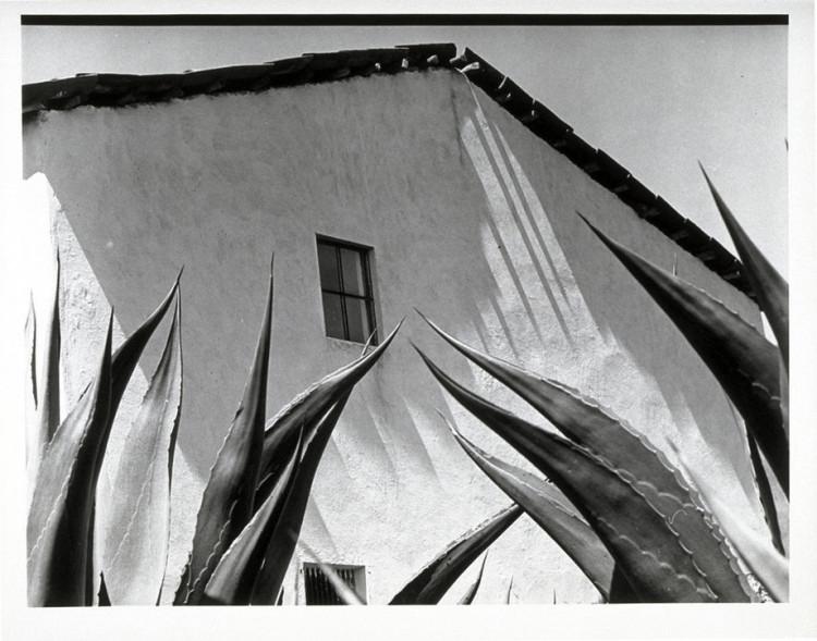 Manuel Álvarez Bravo, Window on the Agaves (Ventana a los magueyes), 1976