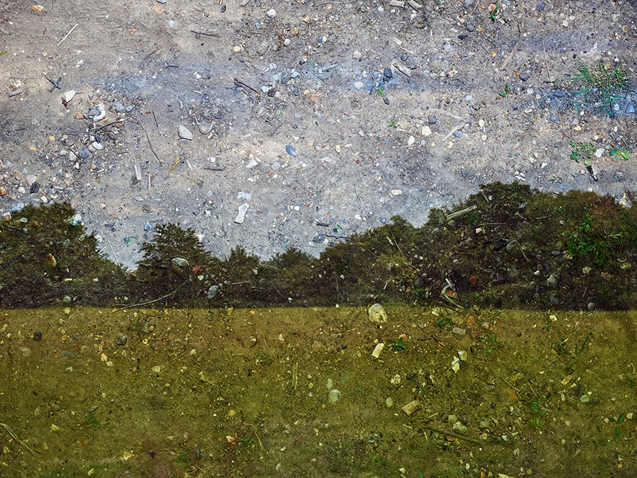 Copy of Tent-Camera Image: Field, Trees and Sky. Flatford, England, 2017