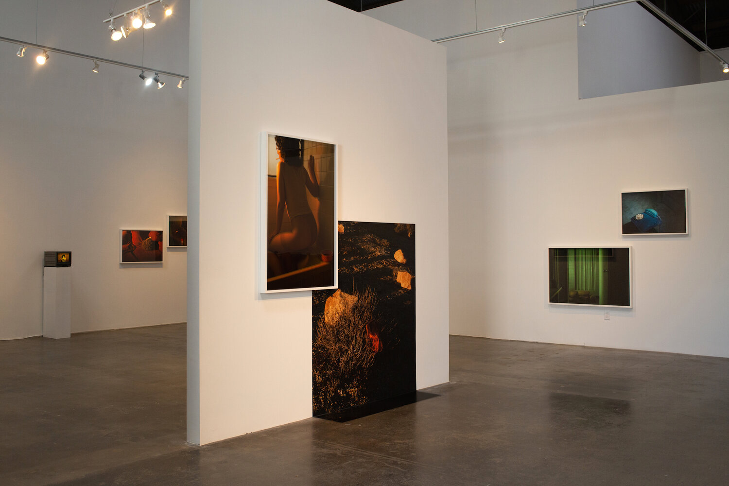Installation view of Tania Franco Klein: Proceed to the Route