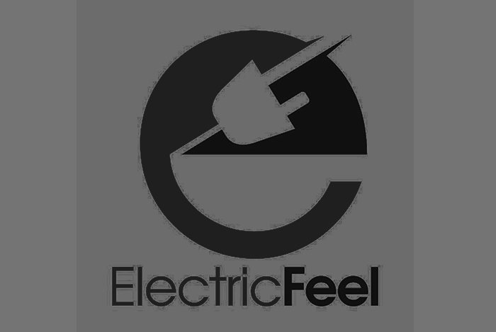 Client:  Electric Feel  Industry:  EV (Electric Vehicles)  Project:  Crowdfunding strategy, Ad creative