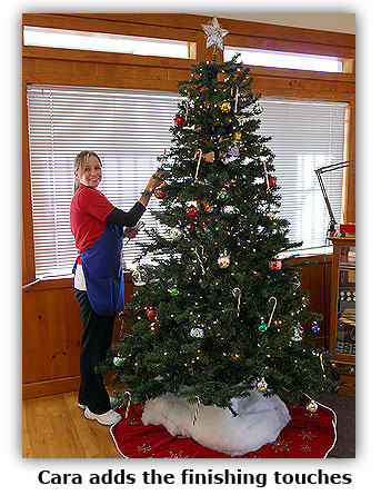 Cara adds the finishing touches to the Southgate Coins Christmas tree