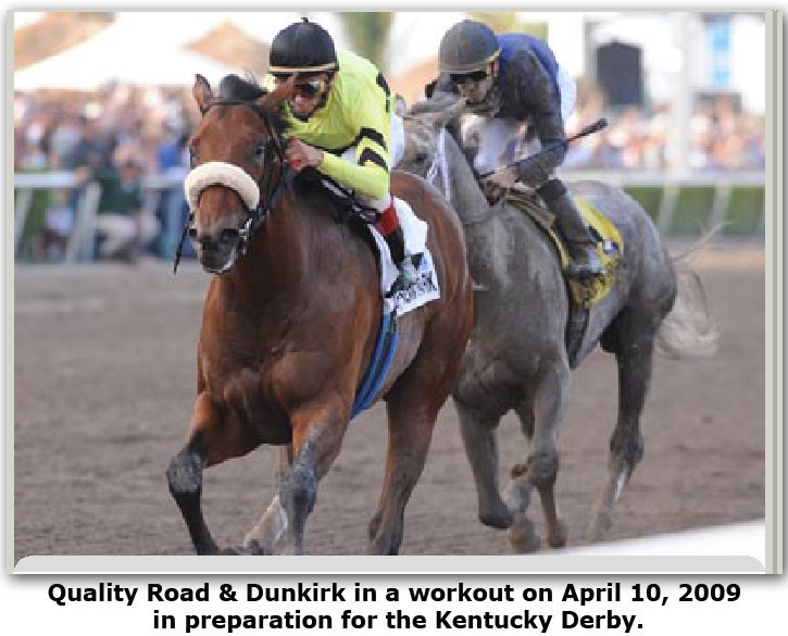 Quality Road & Dunkirk work out in preparation for Kentucky Derby Day