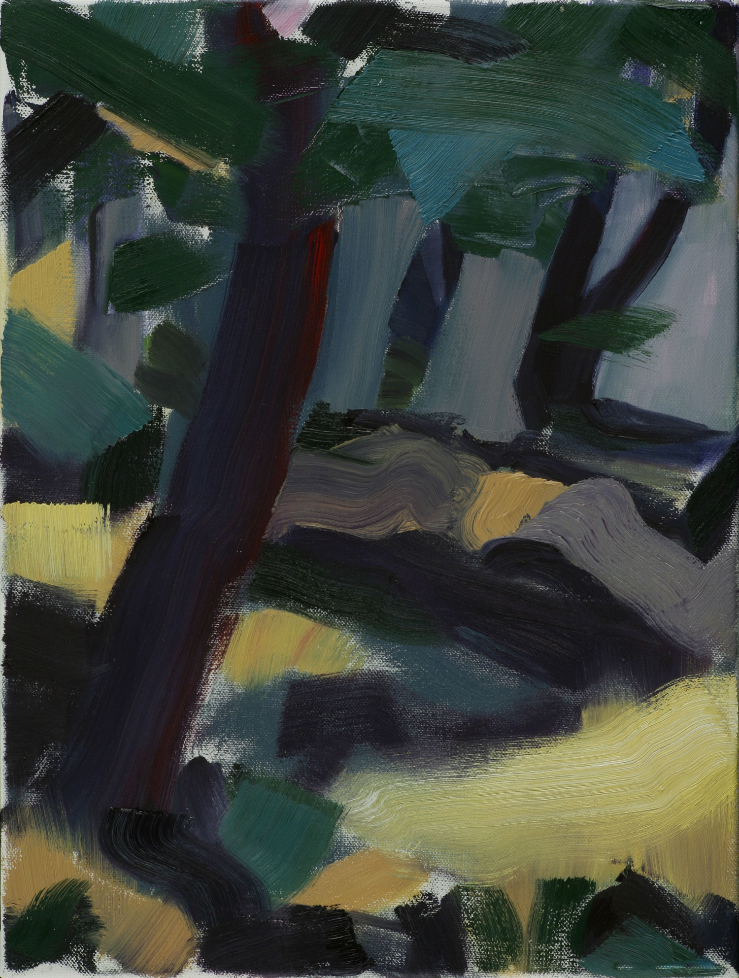 Dark Woods , 2009, oil on canvas, 12 x 16