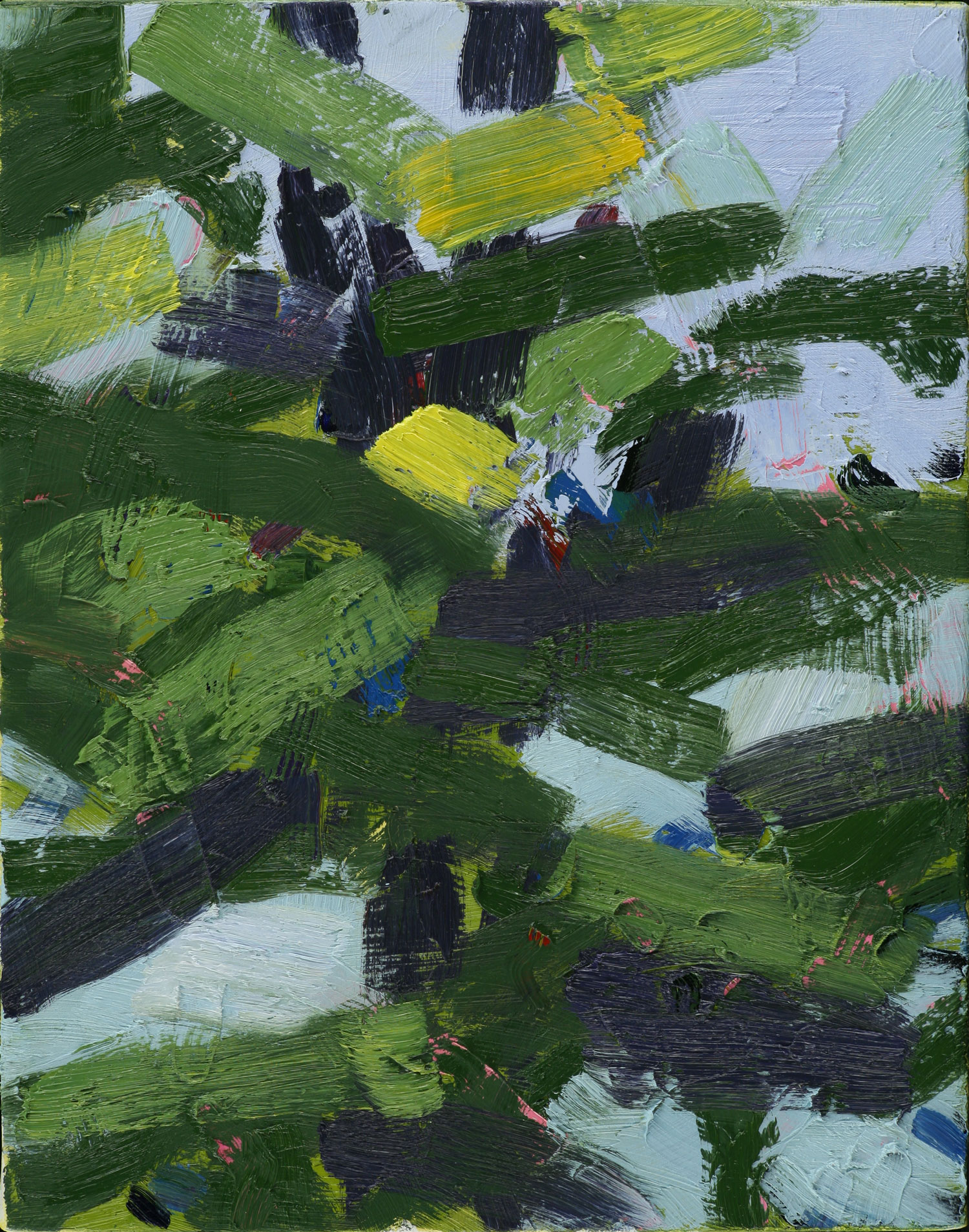 Spruce , 2009, oil on canvas, 11 x 14""