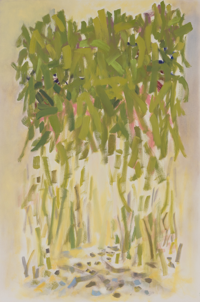 Bamboo , 2017, oil on canvas, 24 x 36""