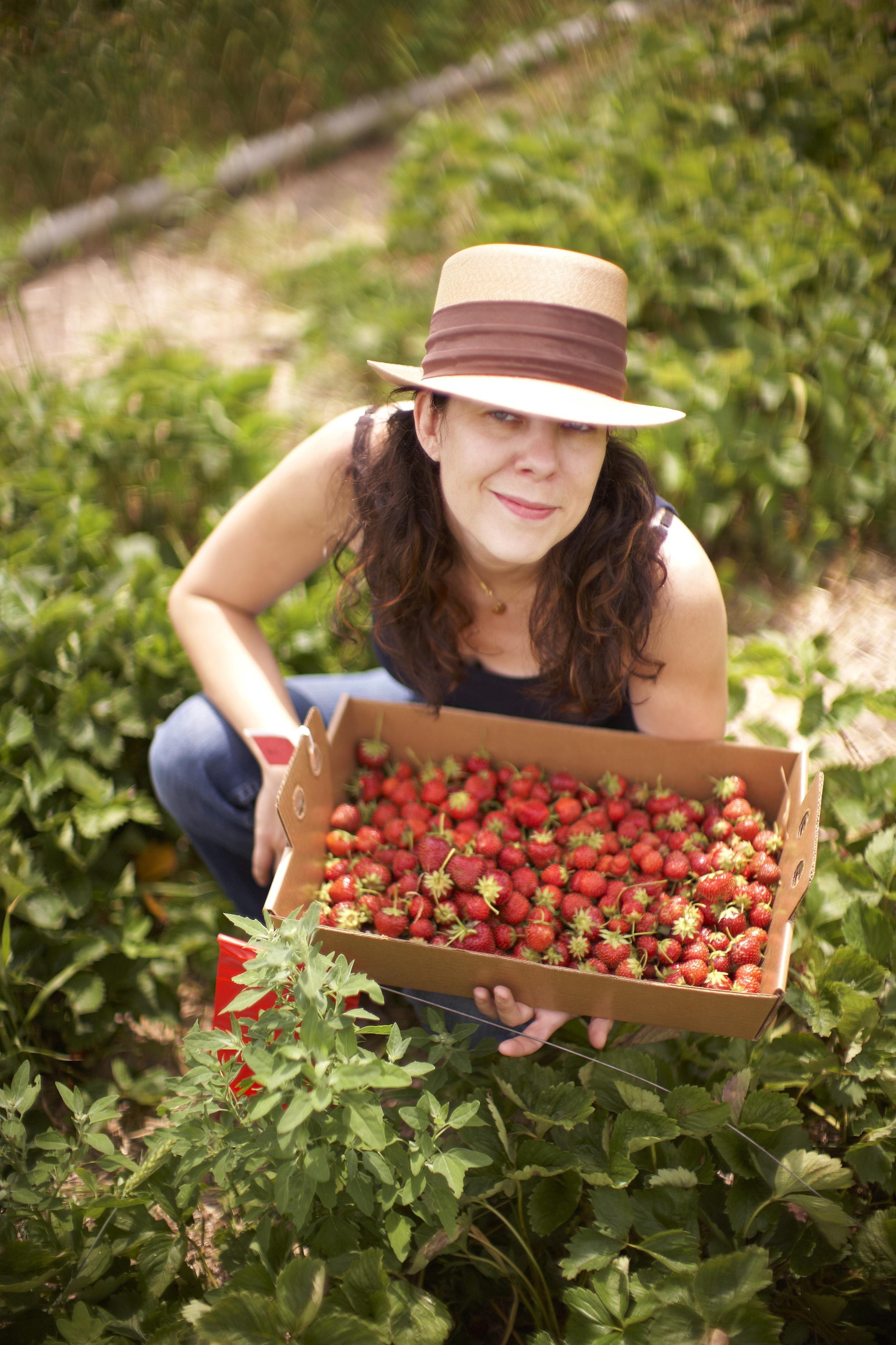 Local, organic, hand harvested strawberries.