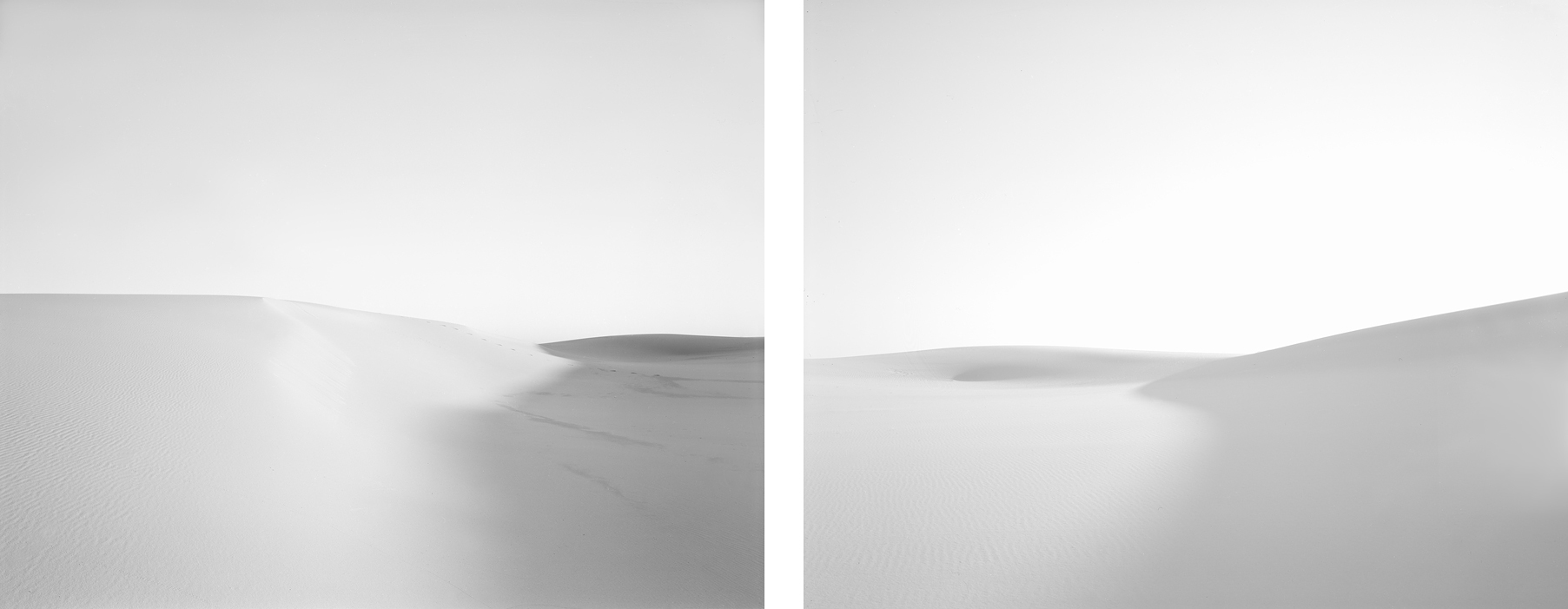 Dune #9, 2011 Diptych