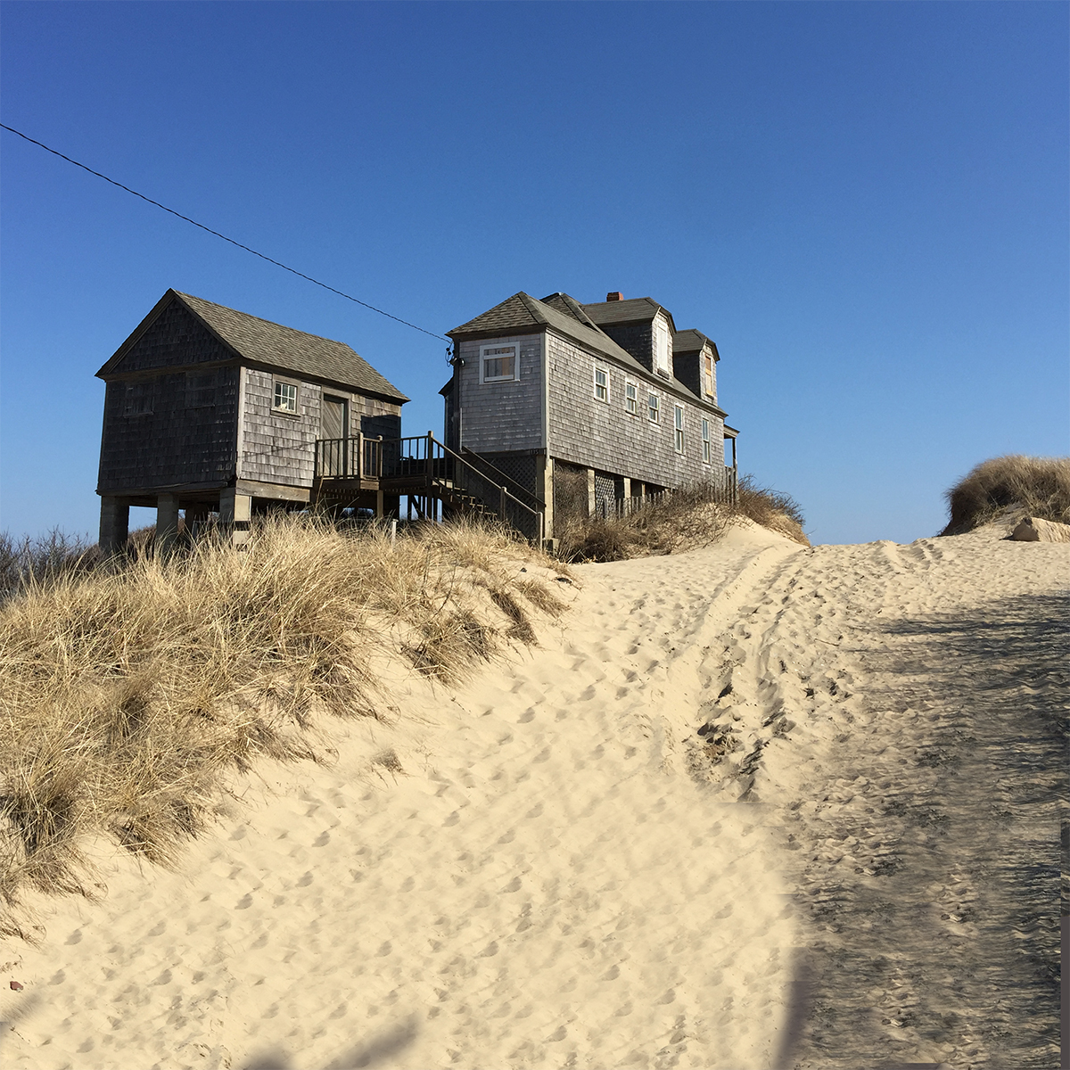 Cottage and dunes Untitled-1.jpg