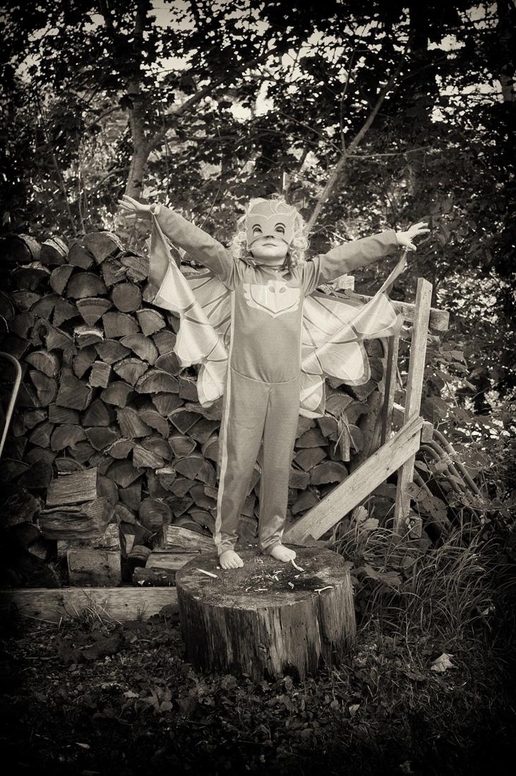 Rosemary owlet 1 R0087616.jpg